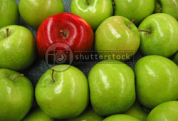 shutterstock apples